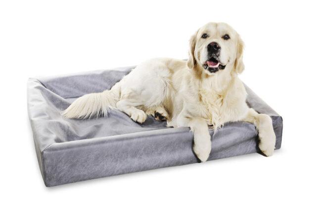 Hondenmand Bia bed 7 grijs 100x120cm-5418