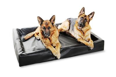 Hondenmand Bia bed 7 zwart 100x120cm-0