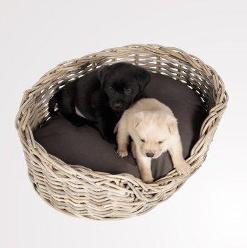 Rieten Hondenmand Basket 80CM-8850