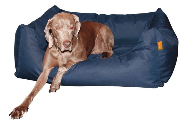 Hondenmand Dream Blauw 100CM-20871