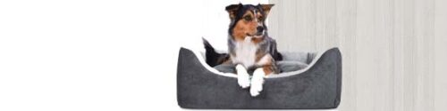 Orthopedische Hondenmand