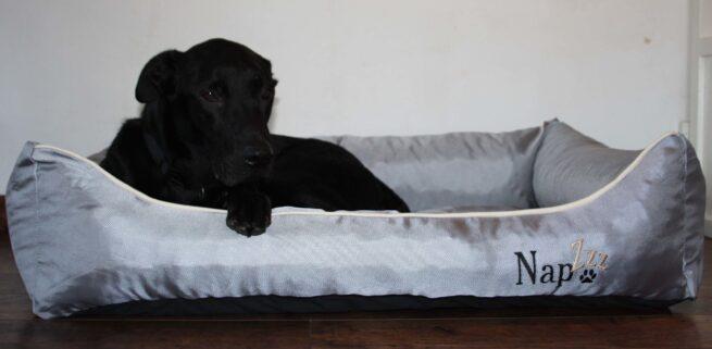 Hondenmand Napzzz Oxford Grijs 100 cm-0