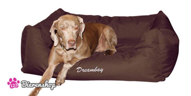 Hondenmand Dreambay Bruin-11977