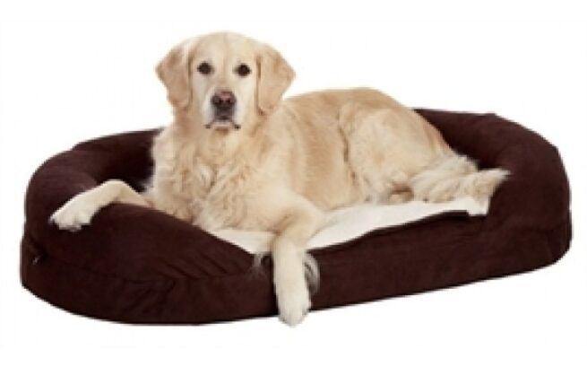 Hondenmand Ortho Ovaal Bruin-0