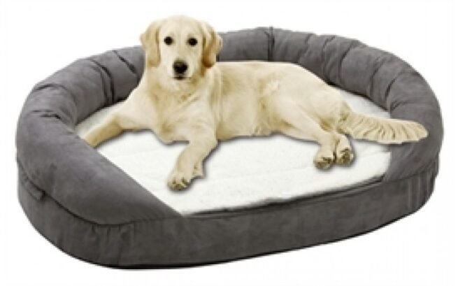 Hondenmand Ortho Ovaal Grijs-0