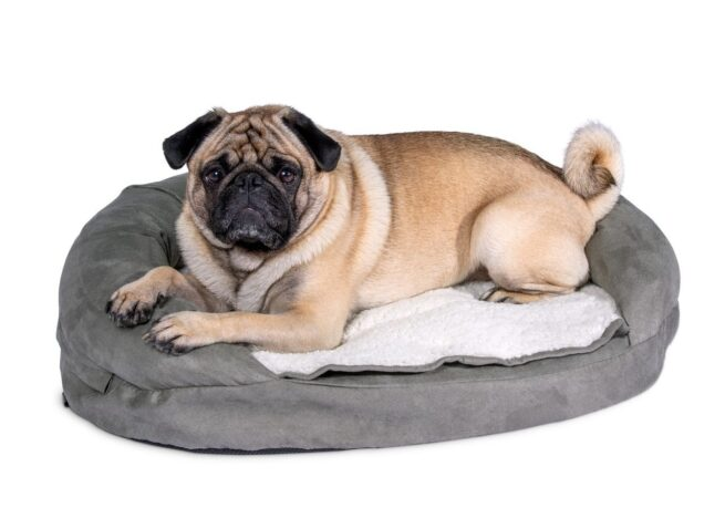Hondenmand Ortho Ovaal Grijs-21216