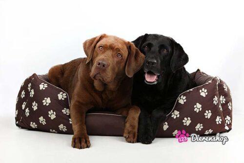 Hondenmand My Paw Bruin-0