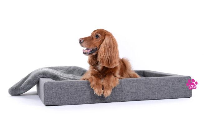 Hondenmand Dream Rectangle Grijs 120 cm-0