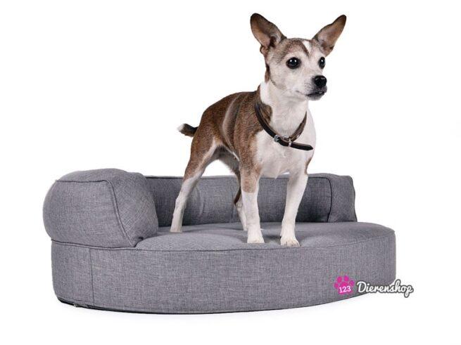 Hondenmand Magic Dream Zilver-0