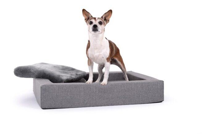 Hondenmand Dream Rectangle Zilver-0