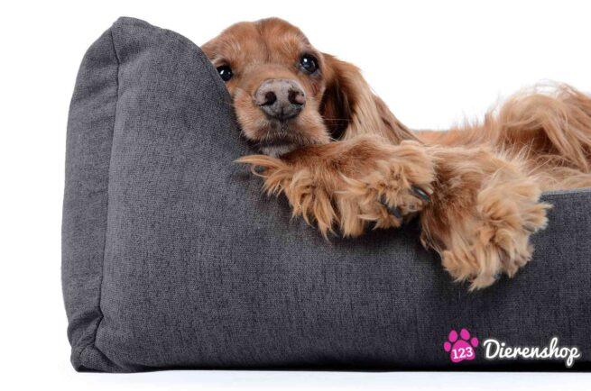 Hondenmand Comfort Dream Grijs-17319