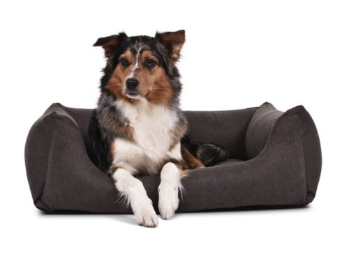 Hondenmand Comfort Dream Bruin-0
