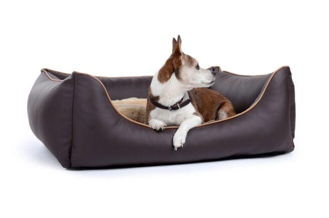 Hondenmand Ultimate Dream Bruin-0
