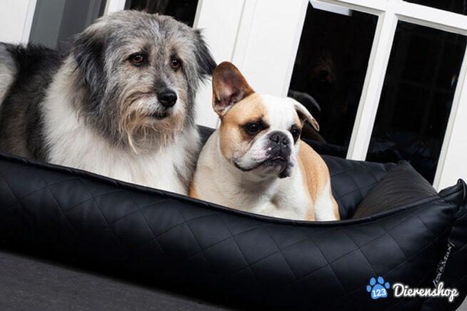 Hondenmand Hondenmand Eco Leather Zwart