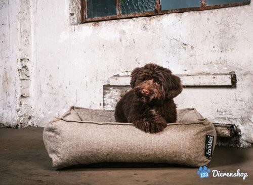 Hondenmand Hondenmand Lex & Max Paris Zand