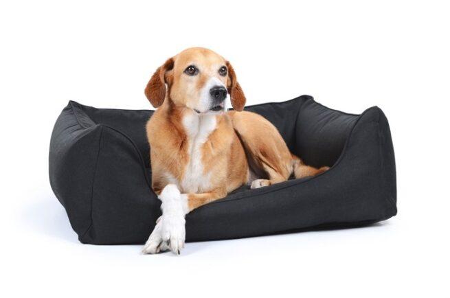 Hondenmand Soft Dream Deluxe Zwart-0