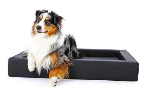 Hondenmand Ligbed Deluxe Zwart-0