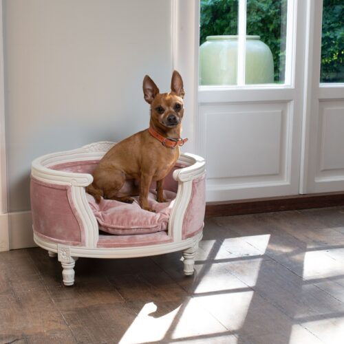 Lord Lou Hondenmand Lord Lou George Pink Velvet Small