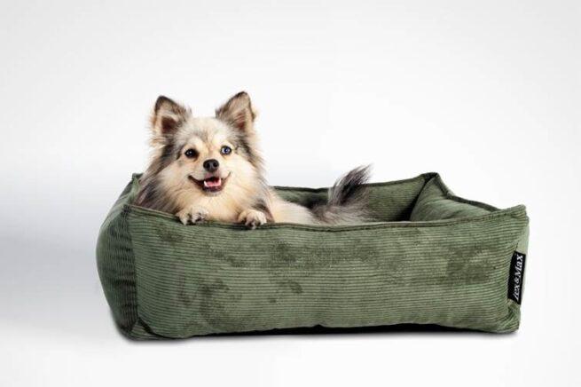 Hondenmanden Lex & MAx Hondenmand Chicago Groen