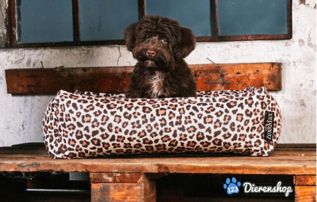 Lex en Max hondenmand Nairobi 70cm