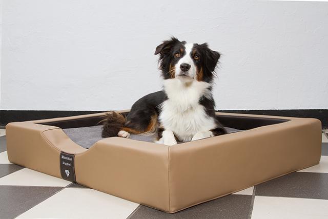 Orthopedische Hondenmand DoggyBed Orthopedische hondenmand Gelax Bruin-Nougat