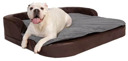 Orthopedische Hondenmand DoggyBed Orthopedische hondenmand Medical Plus Bruin