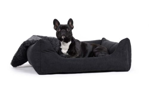 Orthopedische hondenmand Comfort Dream Zwart